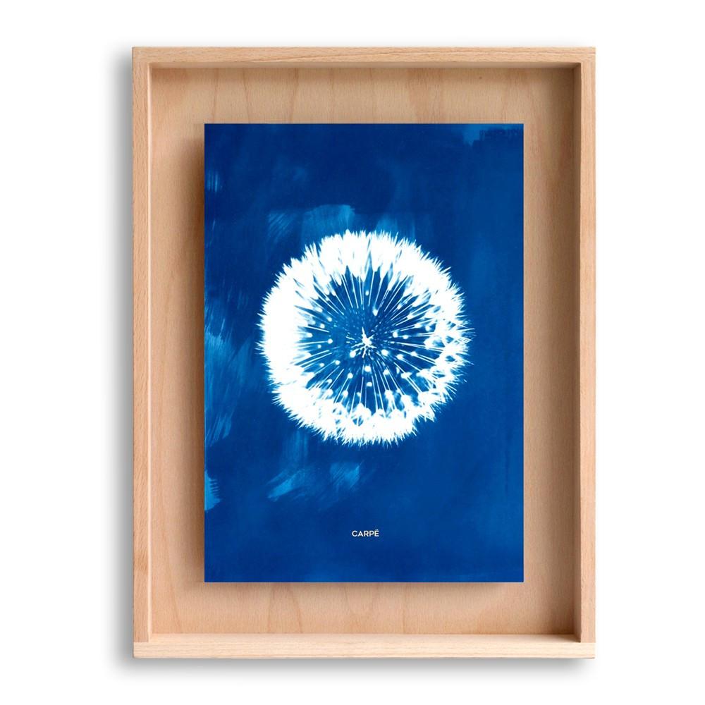 Cadre en bois cyanotype pissenlit 40x30cm