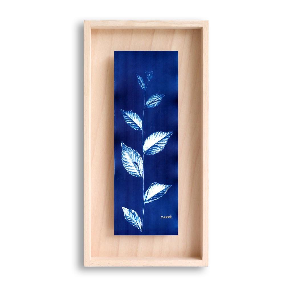 Cadre en bois cyanotype orme 40x20cm