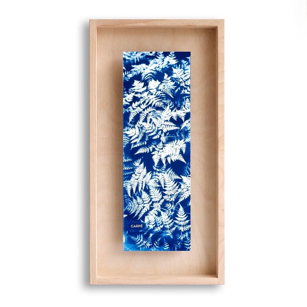 Cadre en bois cyanotype fougères 40x20cm
