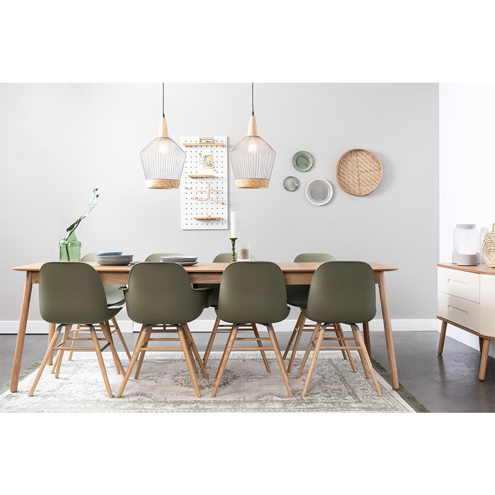 2 chaises résine et bois vert