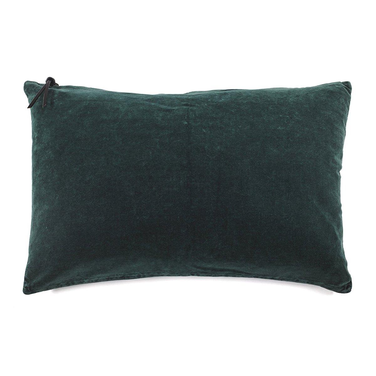 COUSSIN - Lavage de velours Vert Anglais 40x60