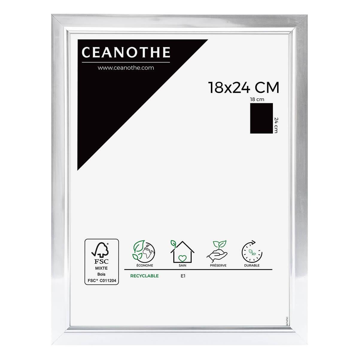Cadre photo aluminium résine plastique 18x24