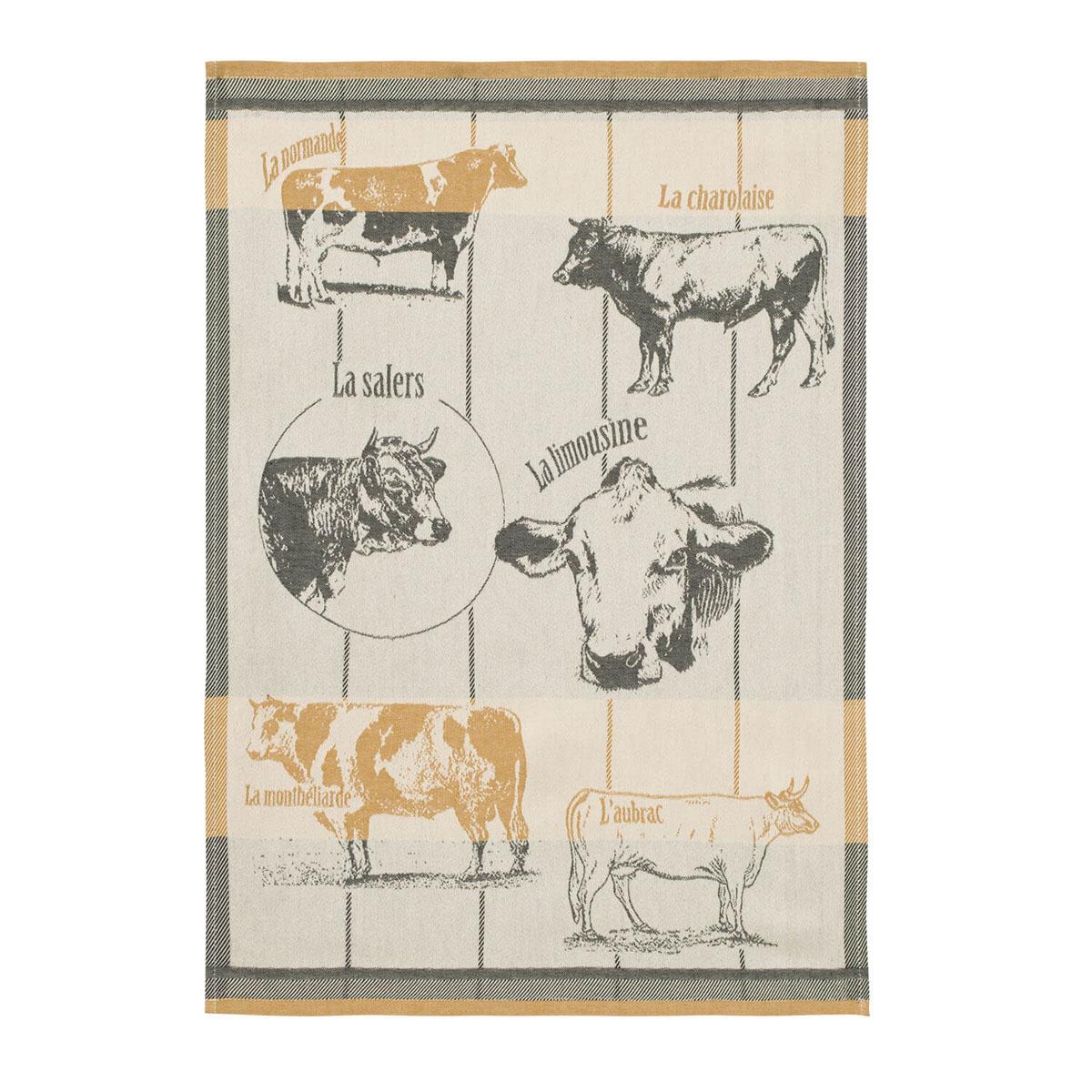 Torchon imprimé en coton Orange 50x75