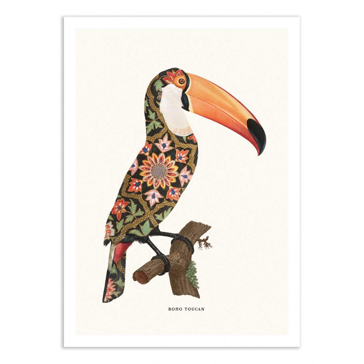 BOHO TOUCAN -  Affiche d'art 50 x 70 cm