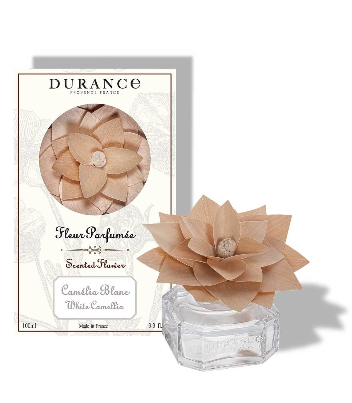 Fleur parfumée camélia blanc