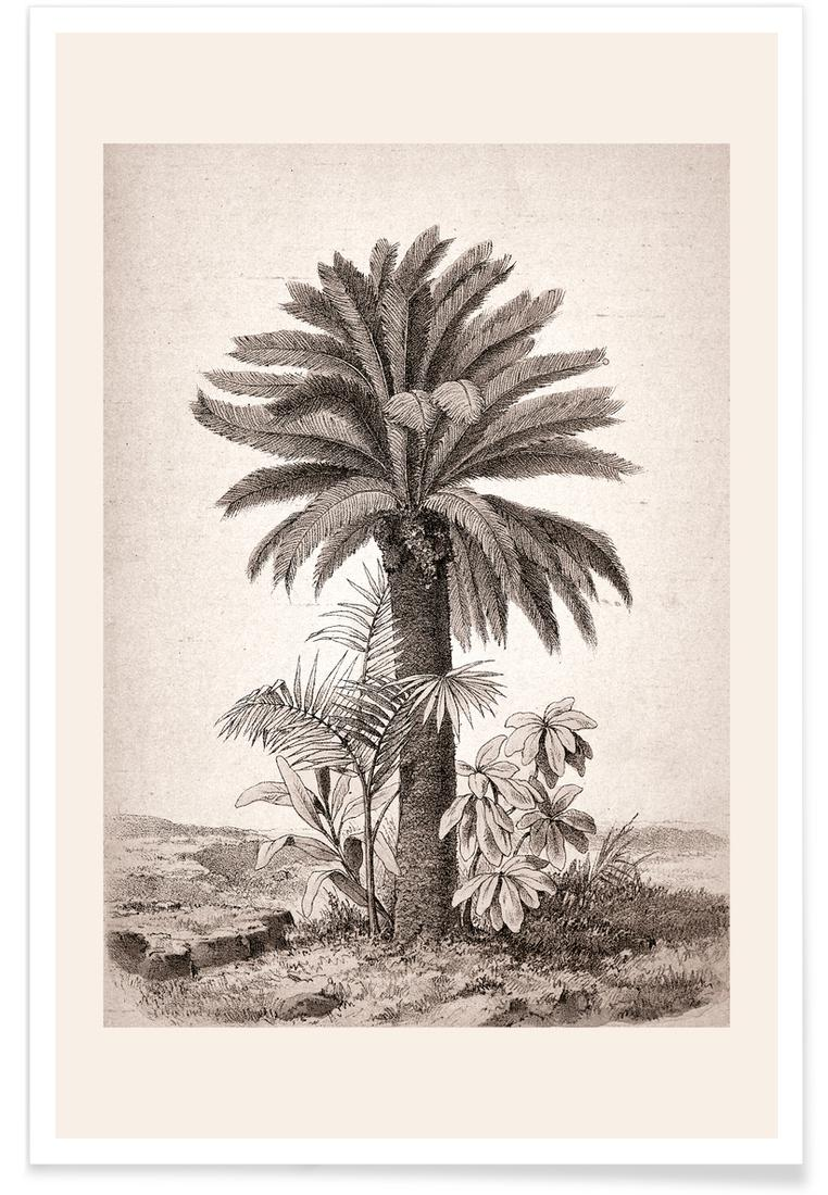 Affiche en Blanc ivoire & Gris/60x90