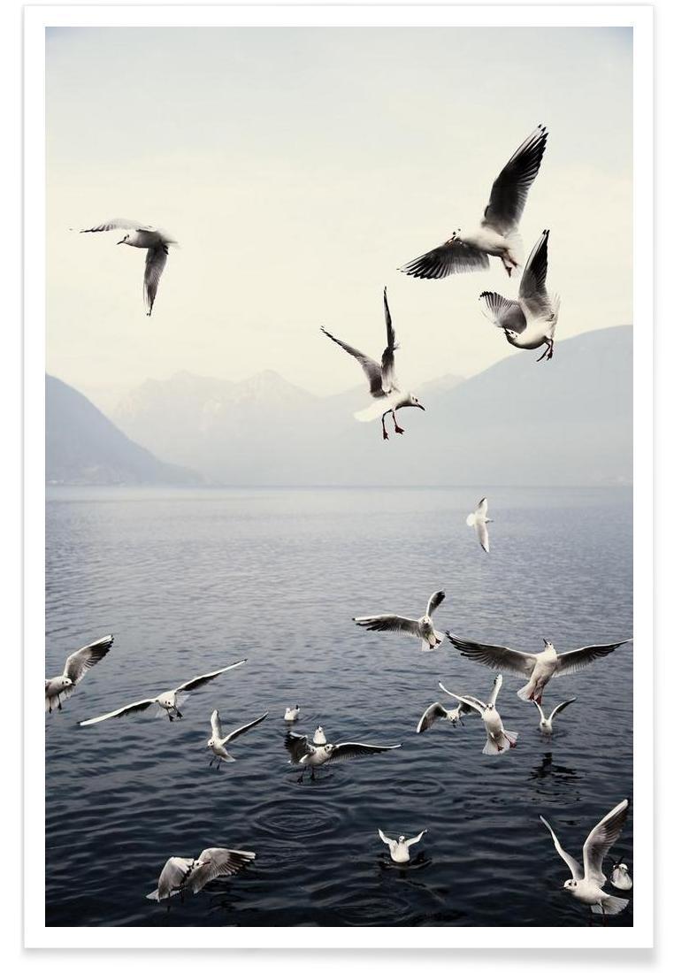 Affiche en Blanc & Bleu/60x90