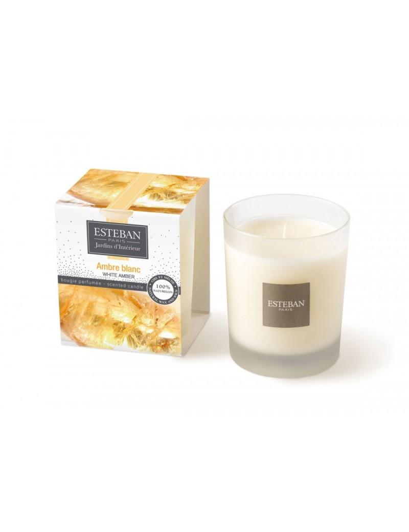 Bougie parfumée ambre blanc
