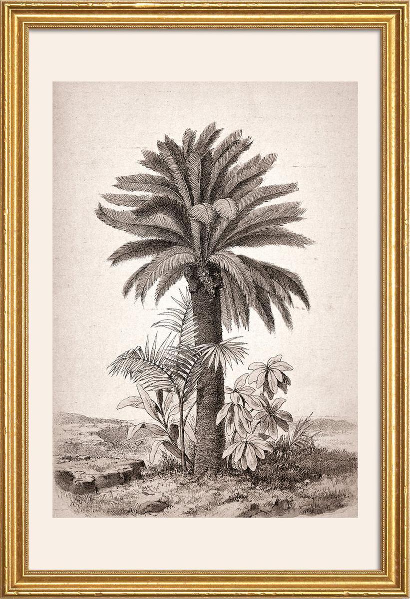 Affiche avec cadre en bois (Doré) en Blanc ivoire & Gris/60x90