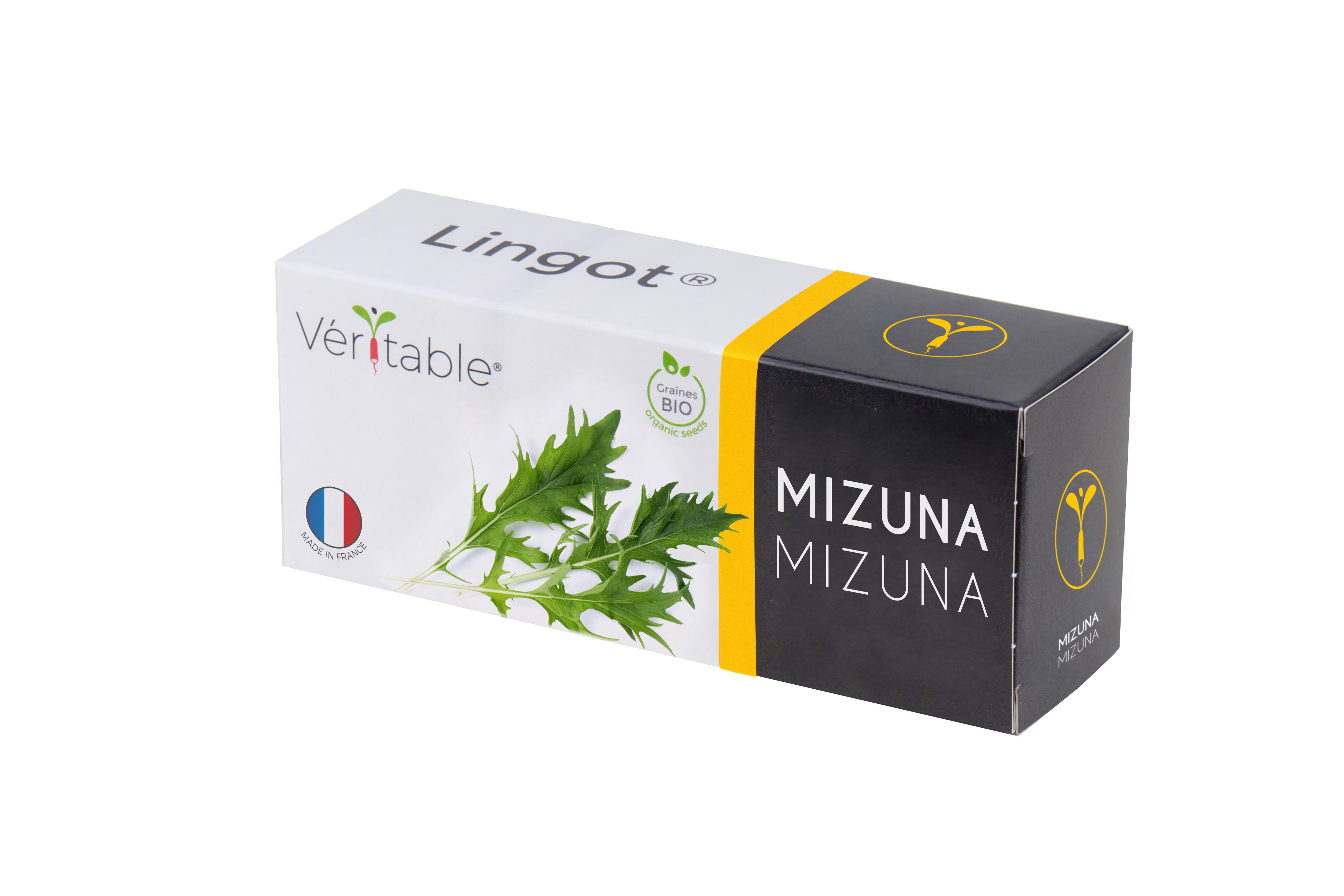 Lingot® Mizuna BIO compatible potager Véritable® et Exky®