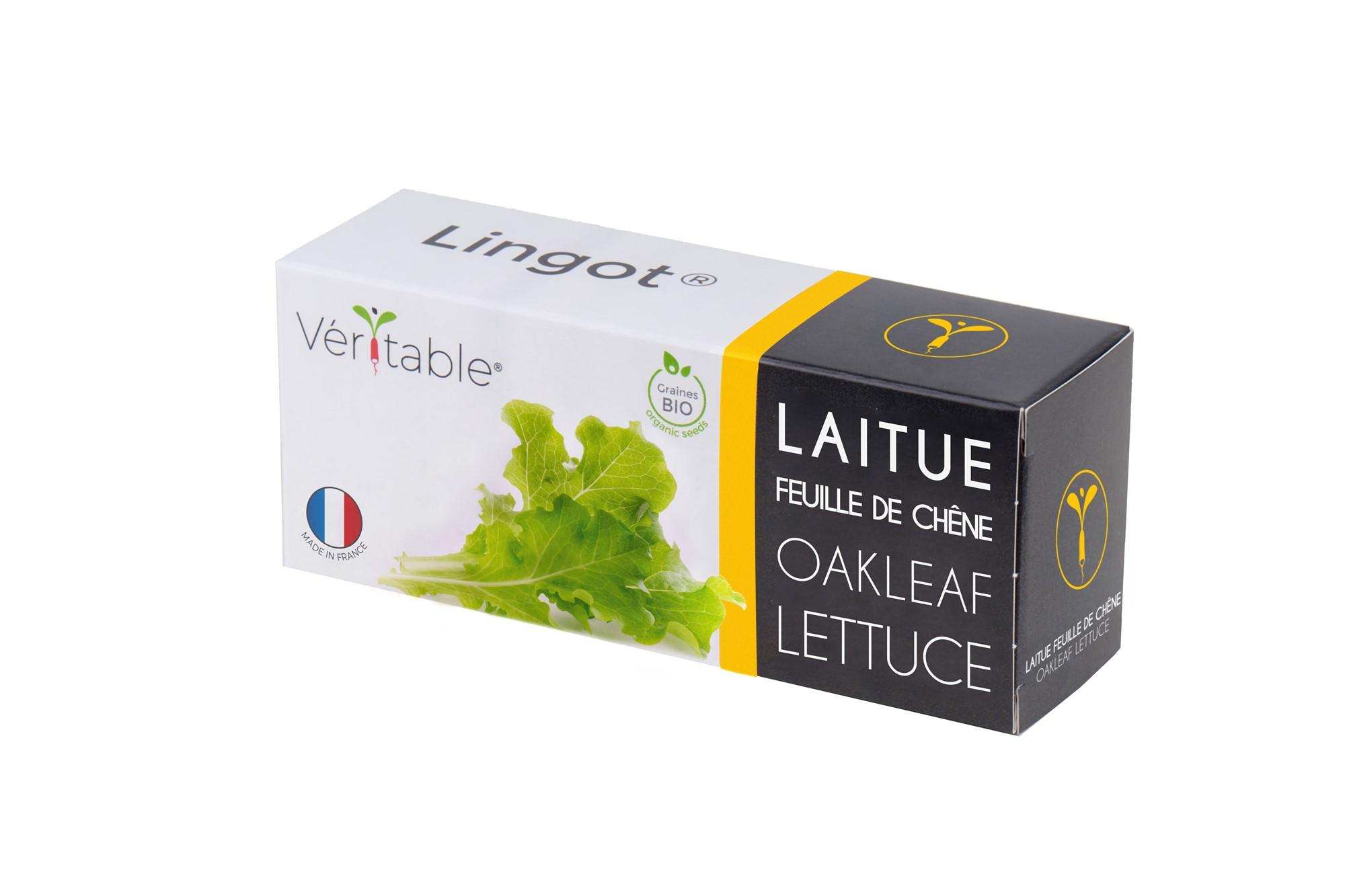 Lingot® Laitue Feuille de Chêne BIO compatible potager Véritable®