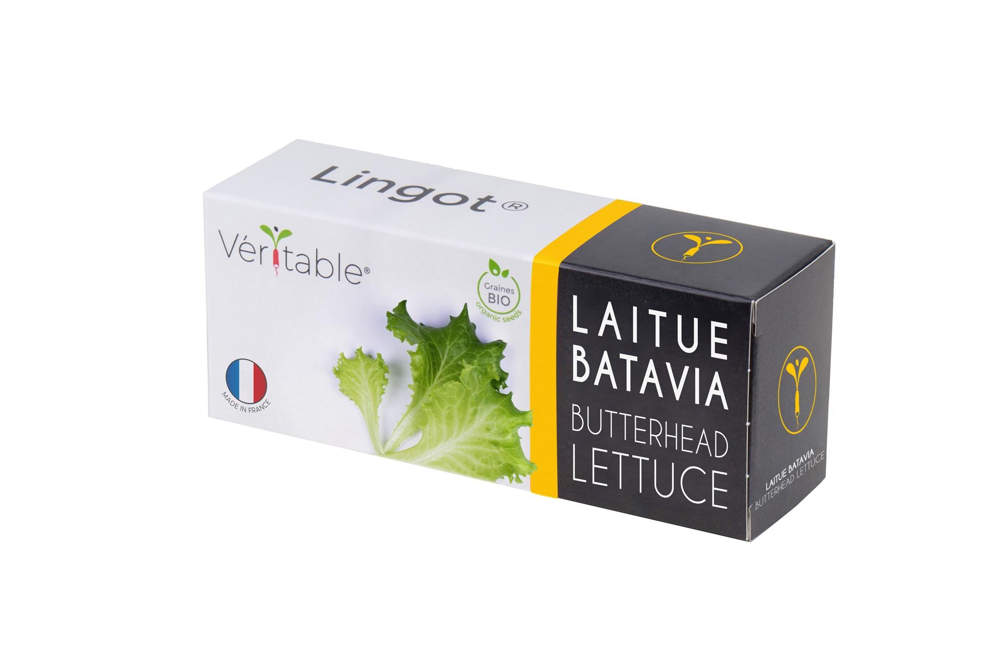 Lingot® Laitue Batavia BIO compatible potager Véritable® et Exky®