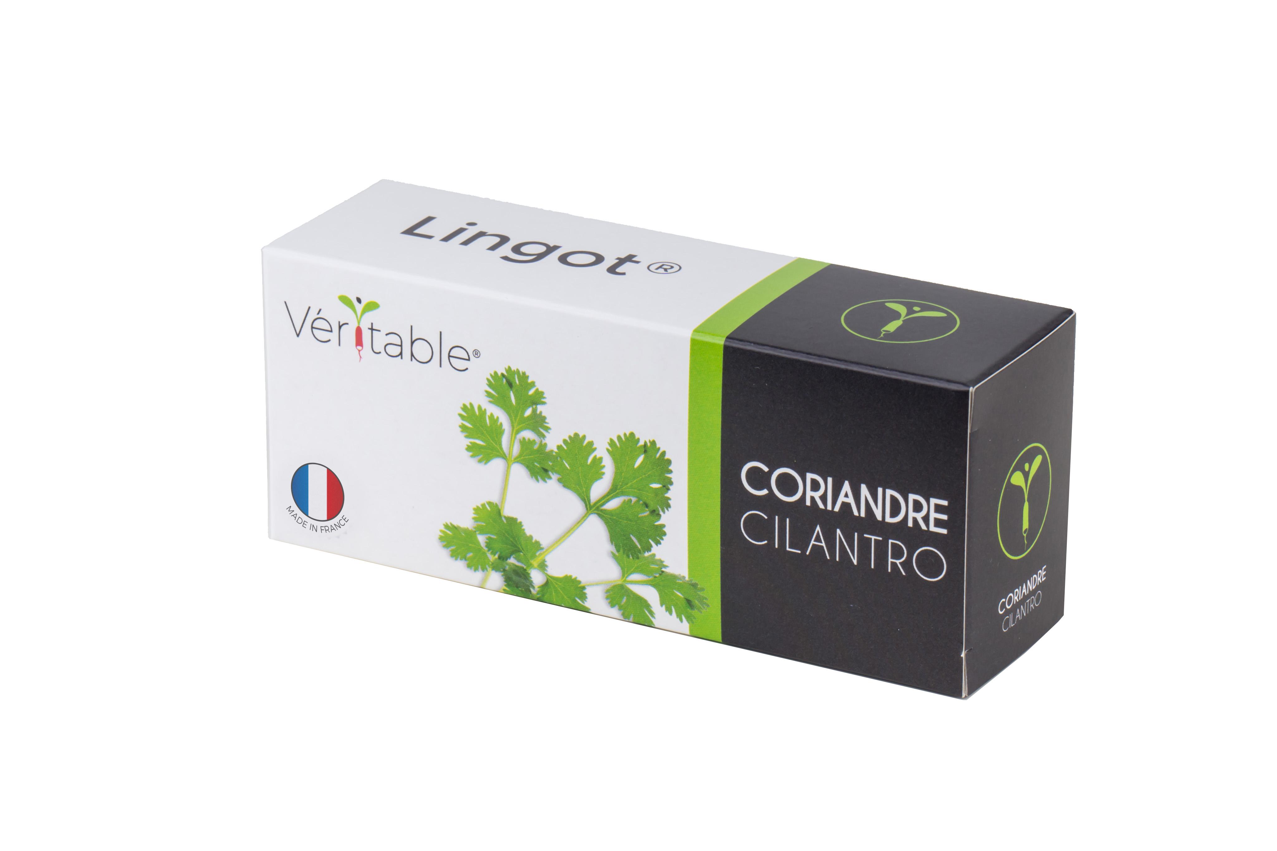 Lingot® Coriandre BIO compatible potager Véritable® et Exky®