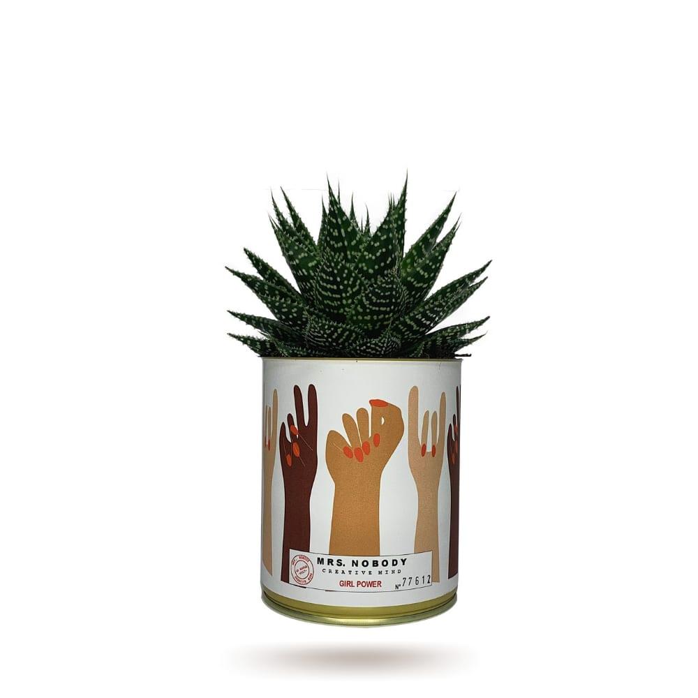 Cactus ou Succulente - Girl Power - Aloe