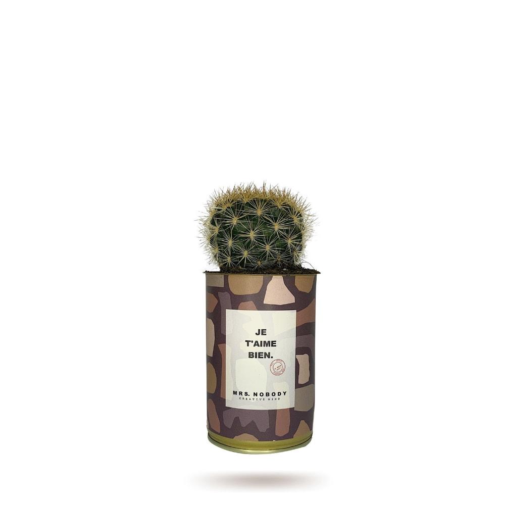 Cactus ou Succulente - Je T'aime Bien - Cactus Boule