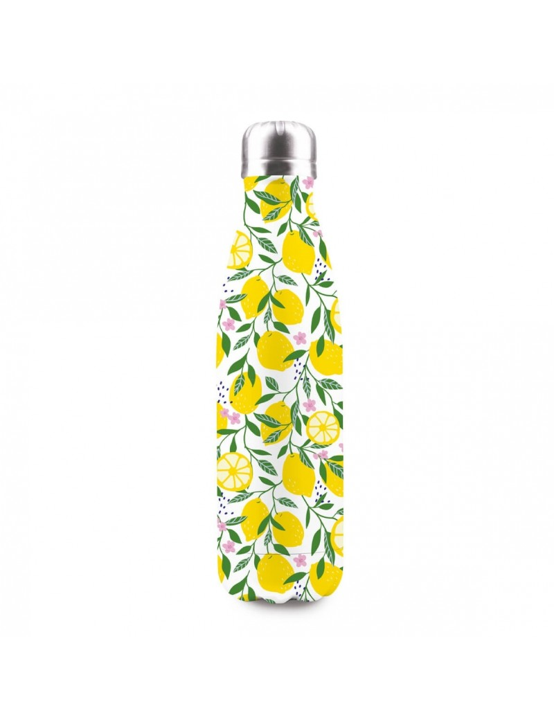 Bouteille isotherme lemons 500ml (photo)