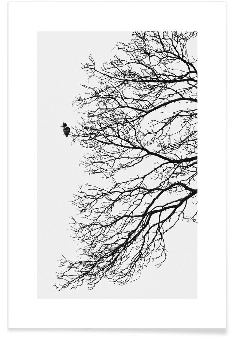 Affiche en Blanc & Gris/20x30