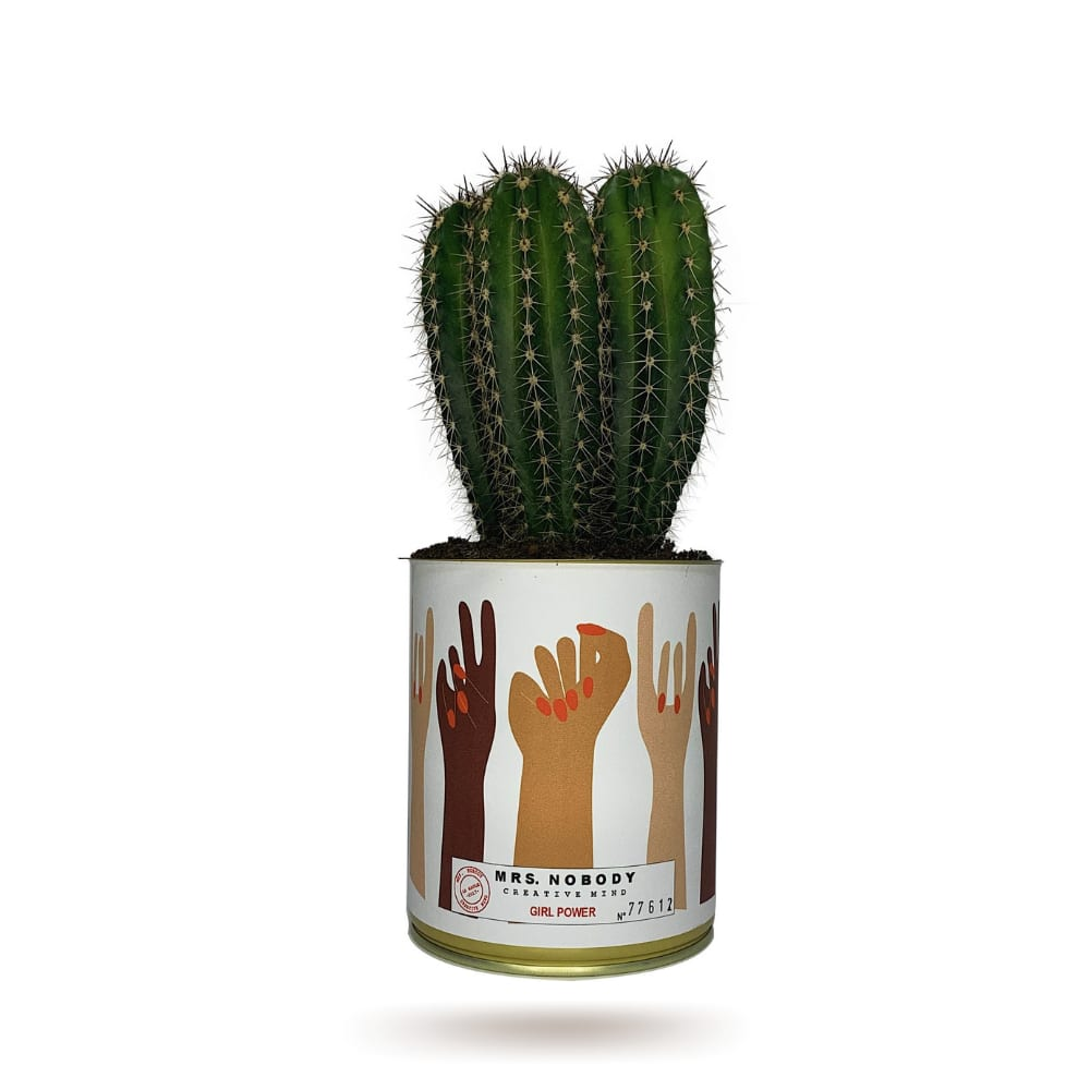 Cactus ou Succulente - Girl Power - Cactus Colonne