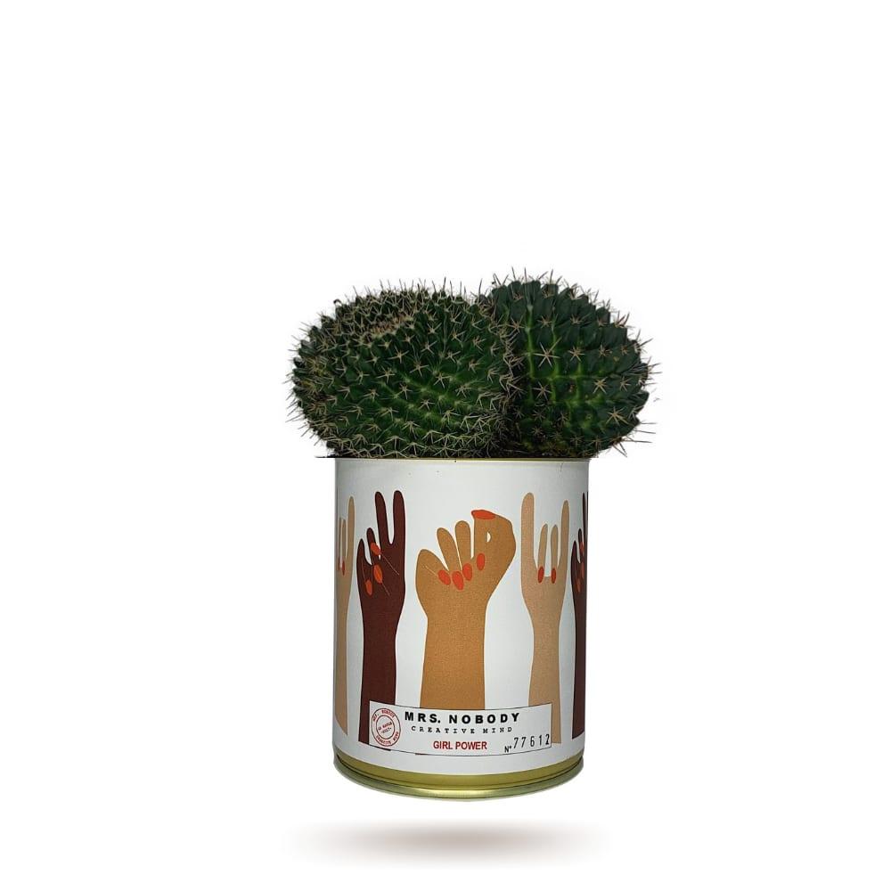 Cactus ou Succulente - Girl Power - Cactus Boule