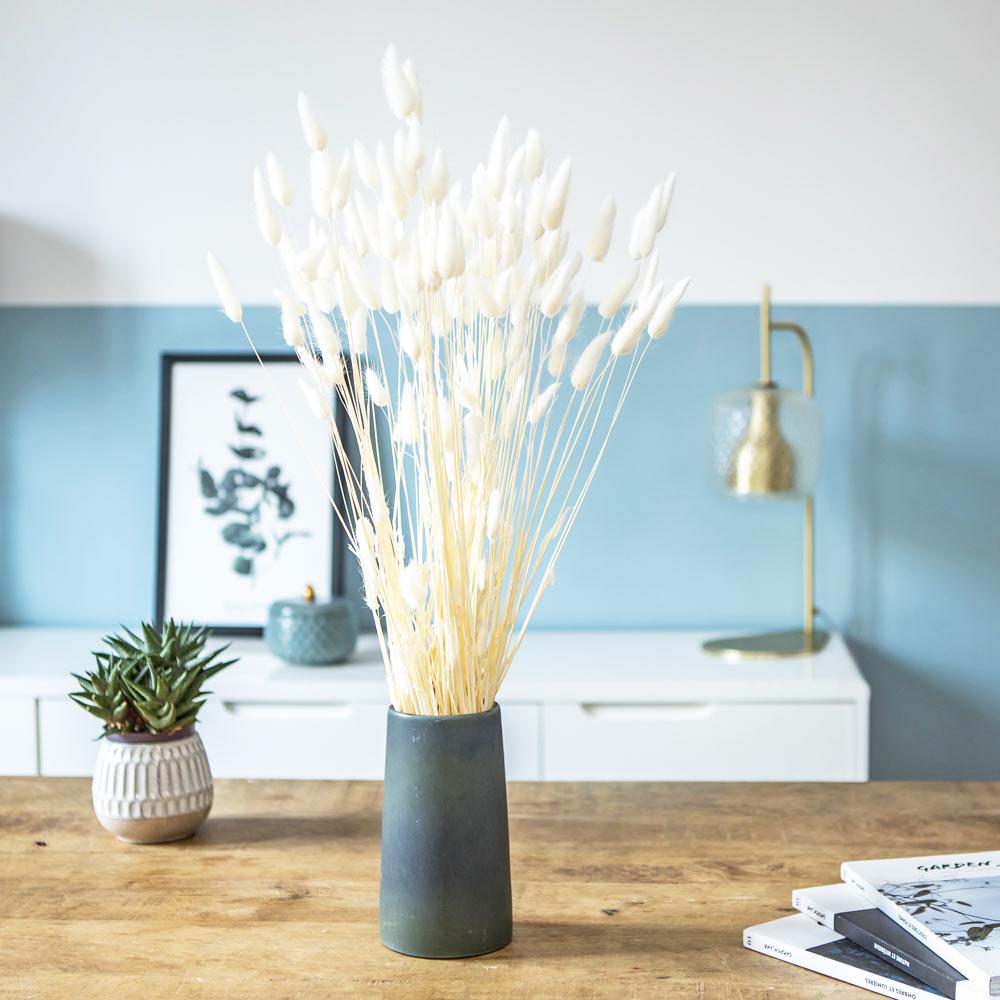 Botte de fleurs séchées lagurus ovatus blanc (env. 100 tiges)