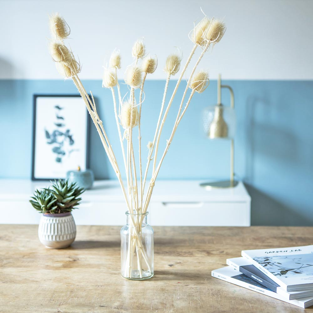 Botte de fleurs séchées chardons secs