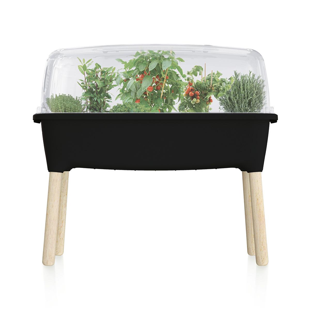 Potager serre en plastique noir avec pieds en bois