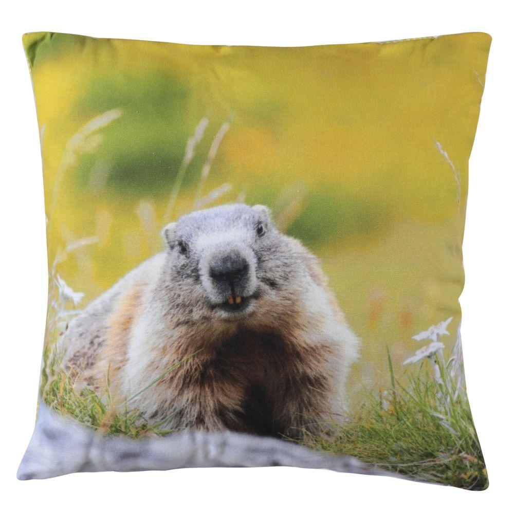 Coussin carré 40 x 40 cm imprimé marmotte