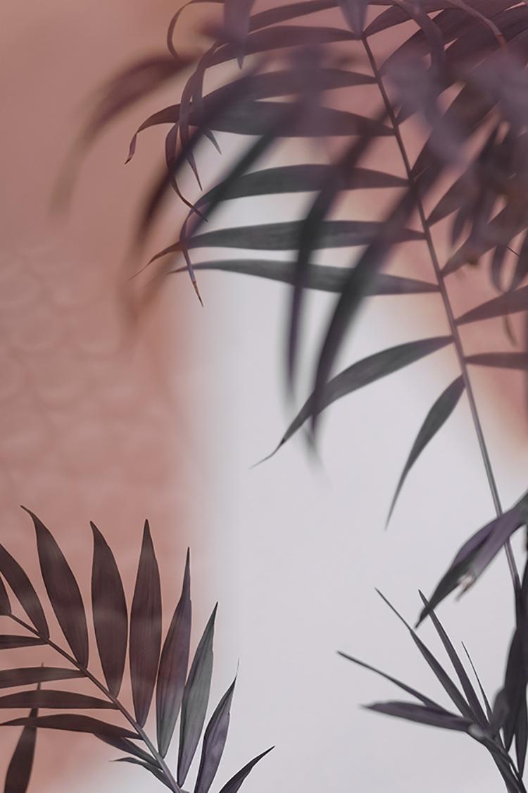 Photographie d'art de Zoé Pignolet 30x45 cm sur plexi