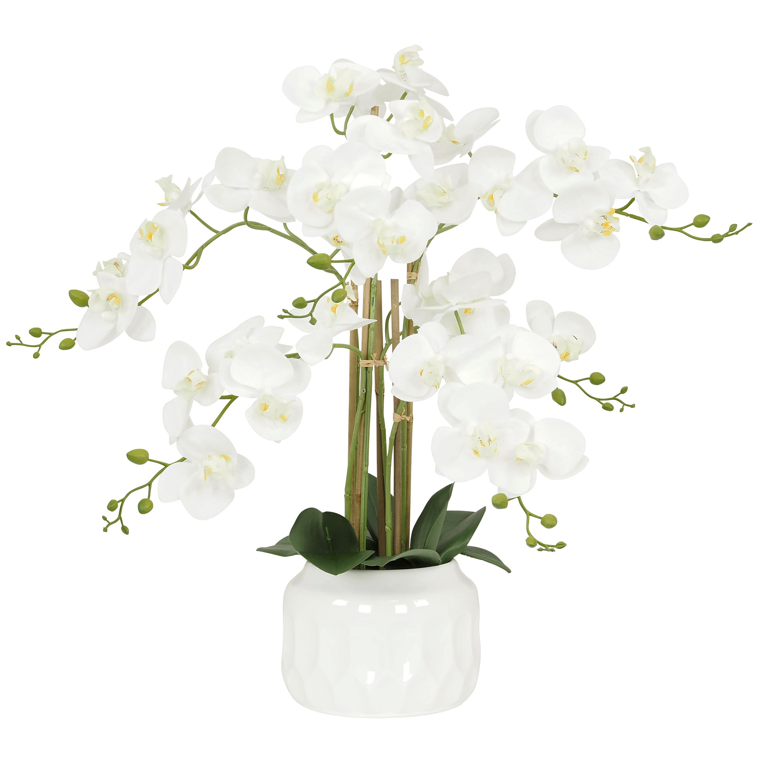 Orchidée blanche artificielle toucher réel\