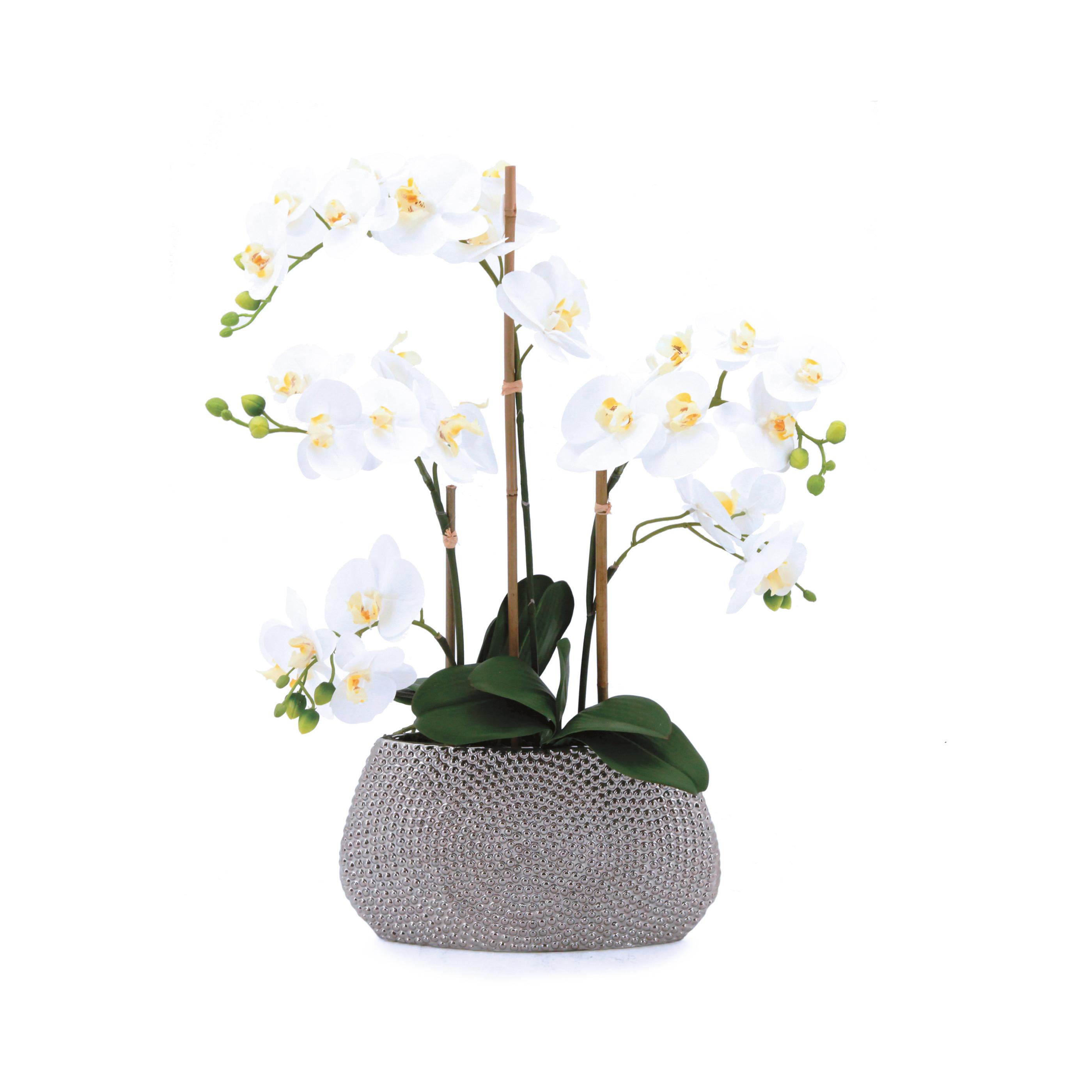 Orchidée blanche artificielle toucher naturel\