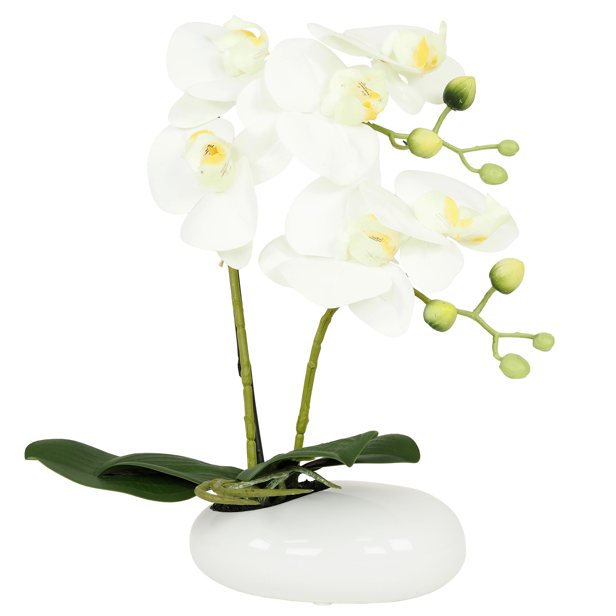 Orchidée blanche artificielle toucher naturel coupe céramique 36cm