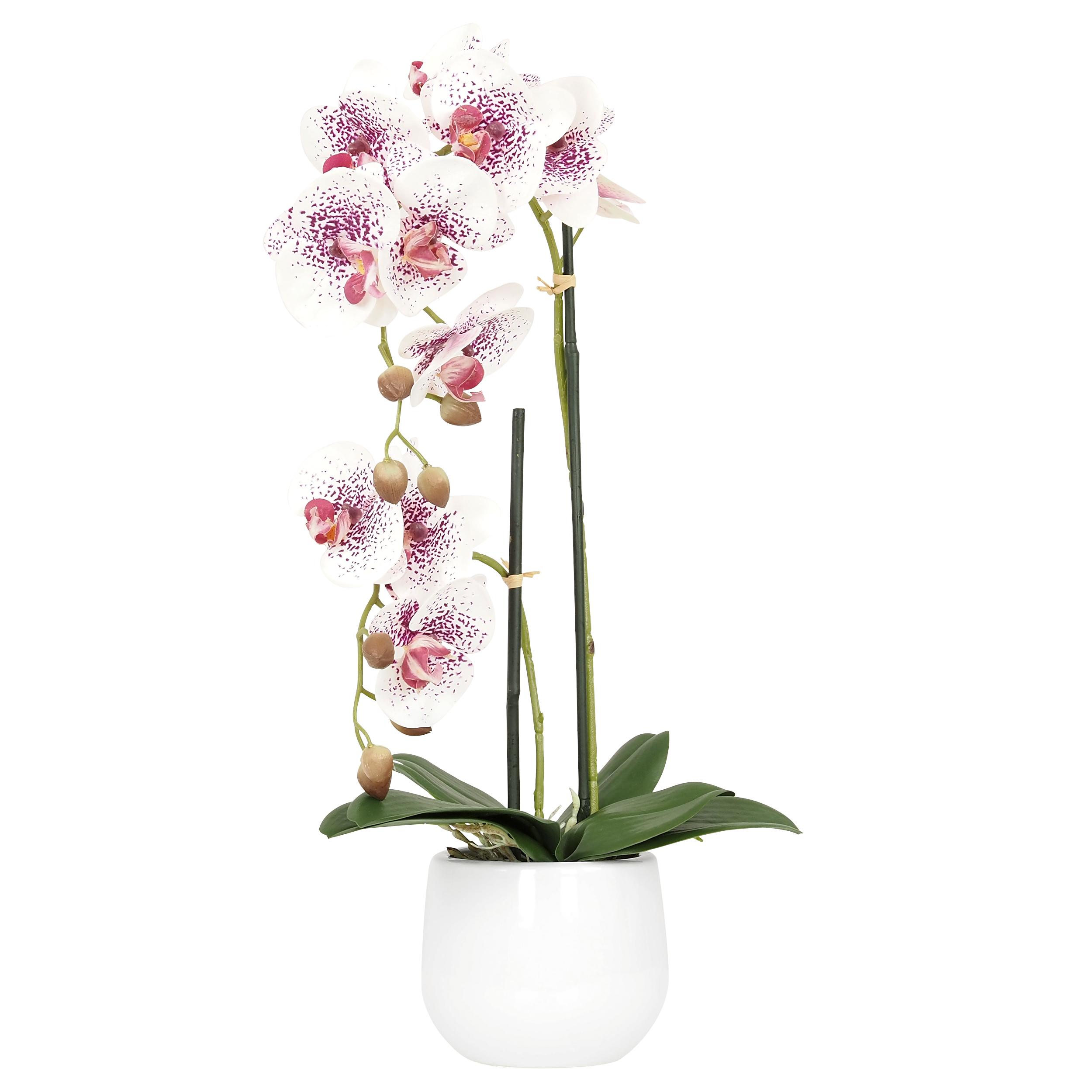Orchidée blanche et fuchsia artificielle pot céramique blanc 51 cm