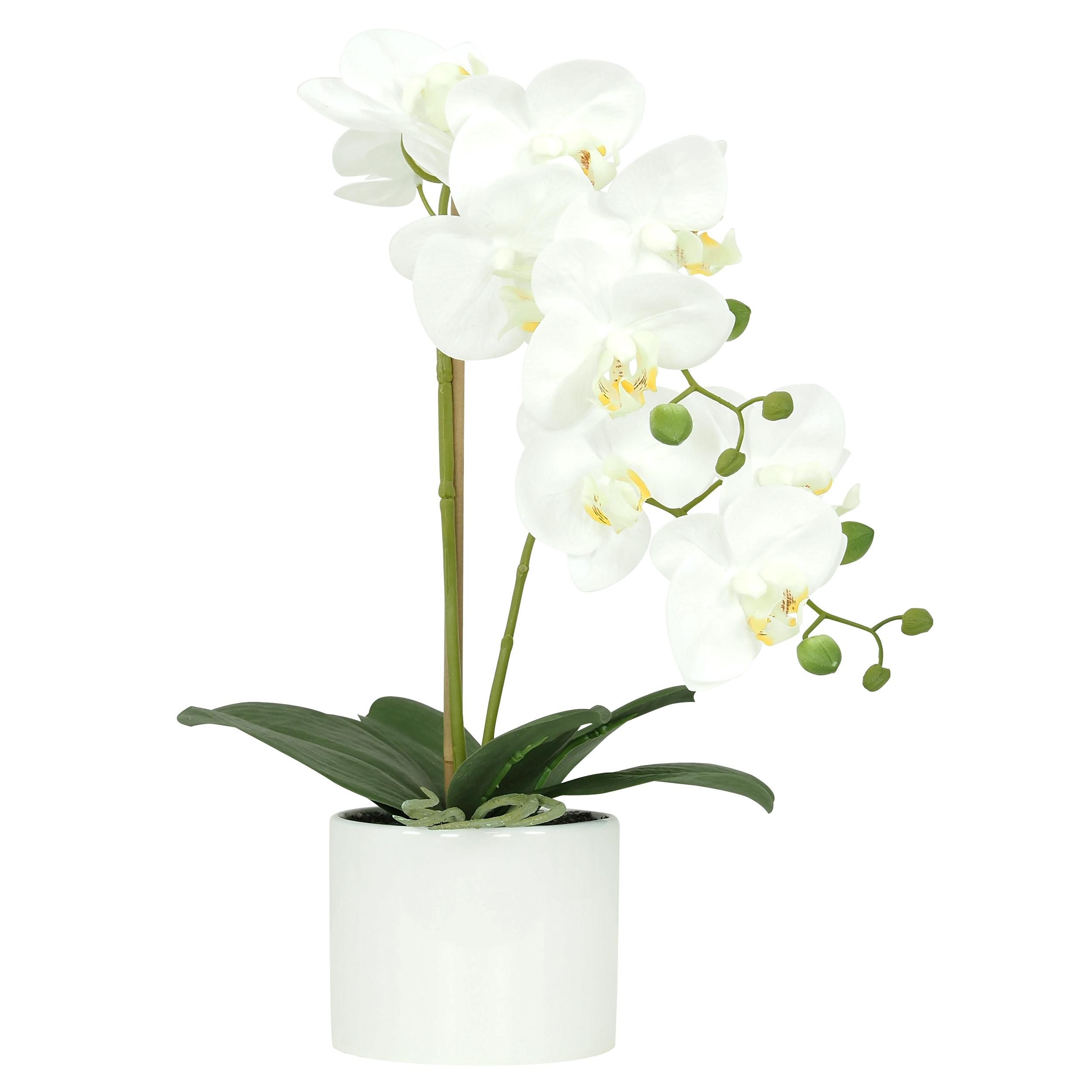 Orchidée blanche artificielle toucher naturel pot céramique rond 58cm