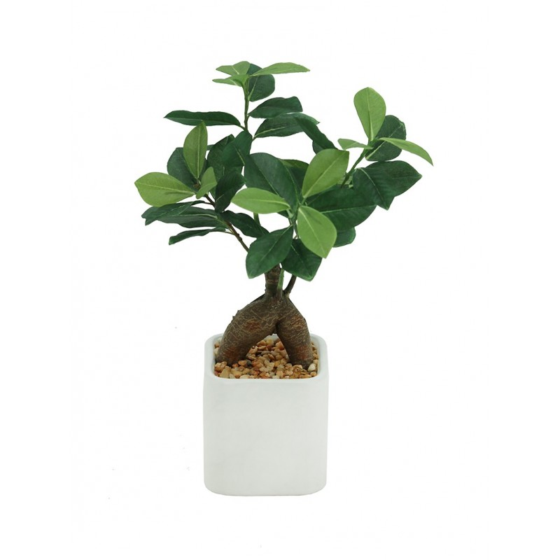 Bonsaï ficus ginseng artificiel pot céramique carré blanc mat 28cm