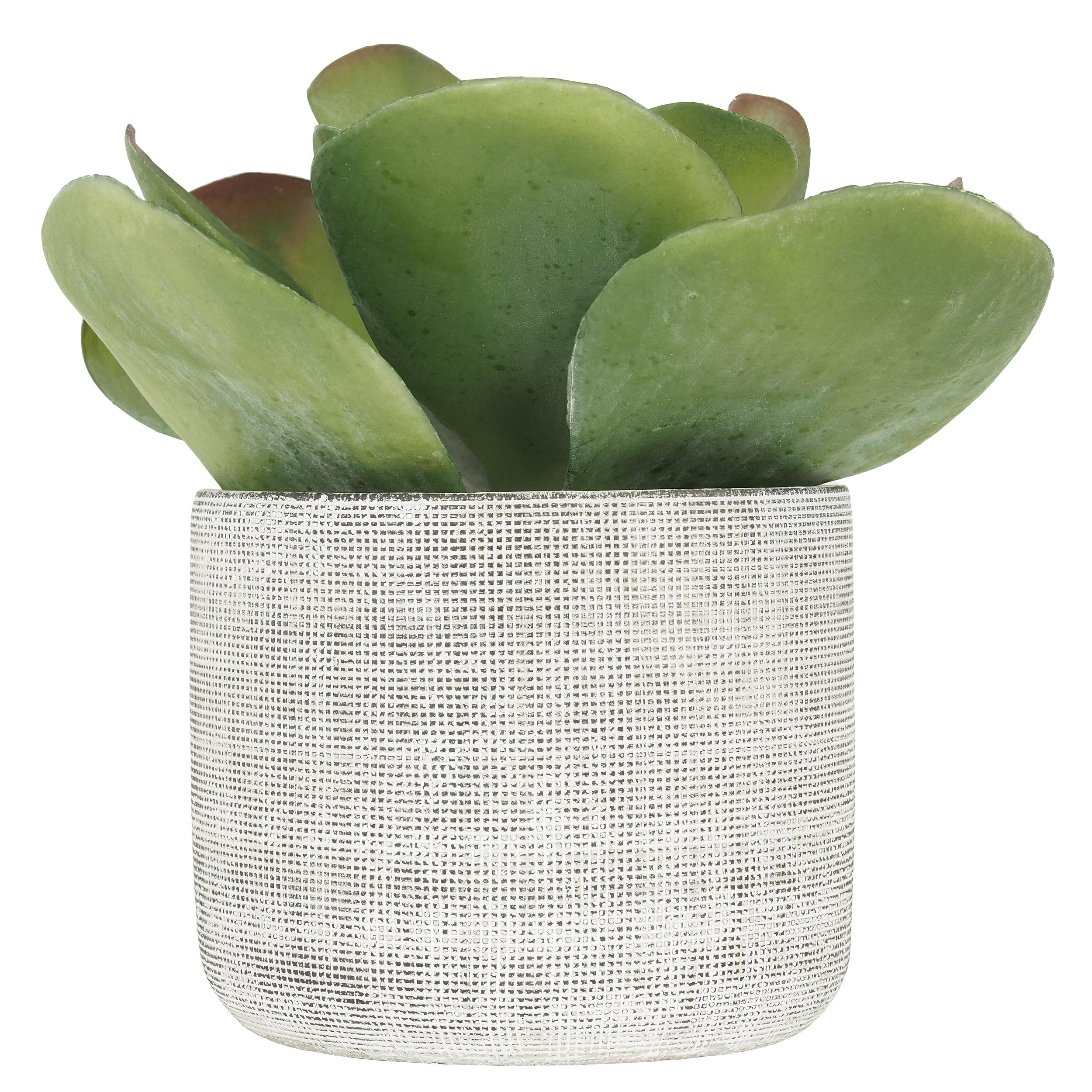 Succulente Kalanchoe Lucia artificielle 24 cm