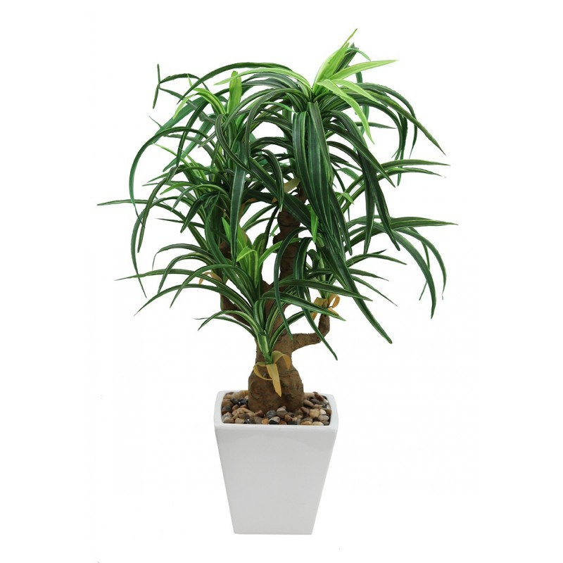Dracaena artificiel en pot céramique carré blanc 63cm