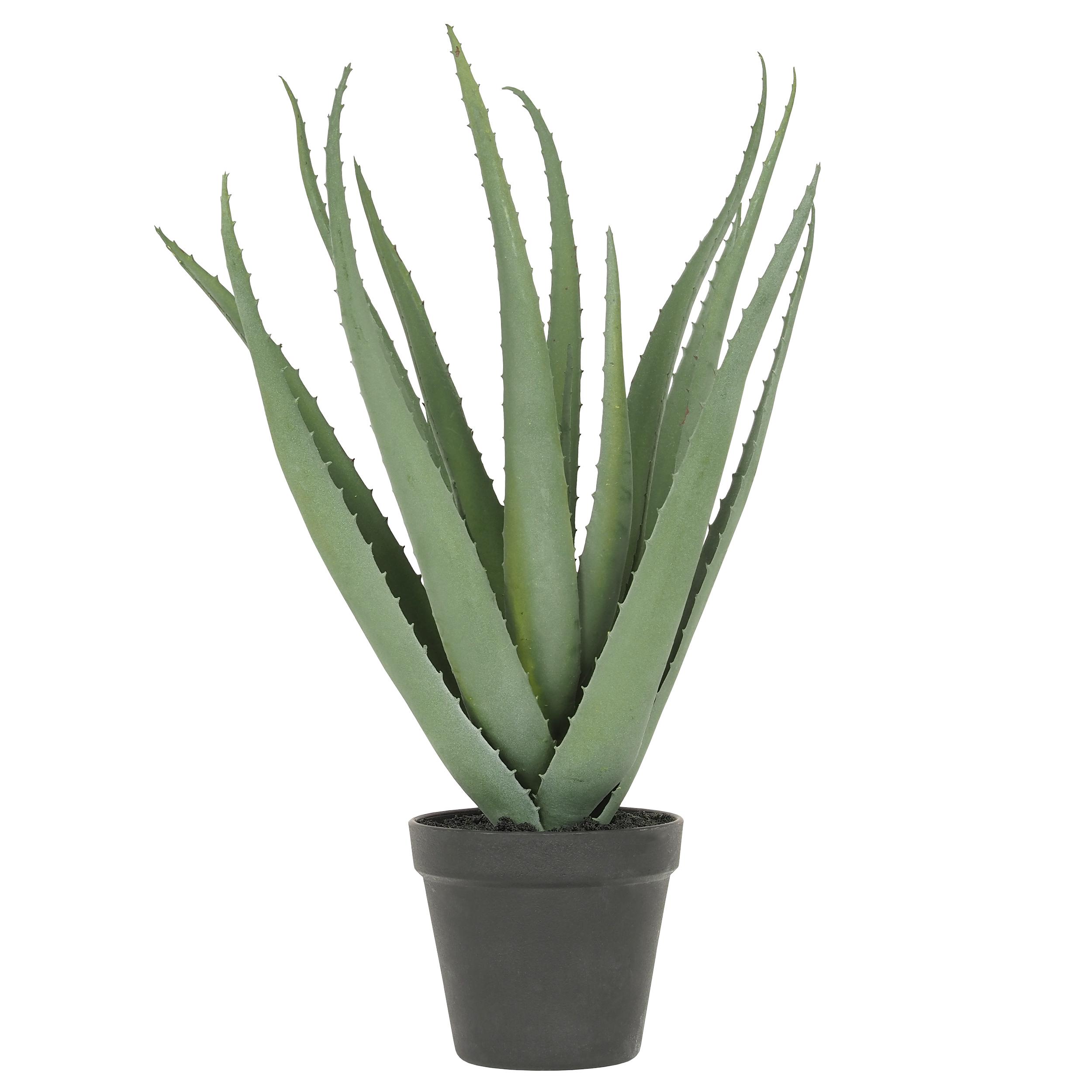 Aloe vera artificielle 45 cm