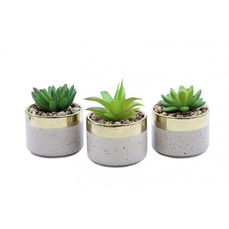 3 succulentes artif Terrazzo 10 cm