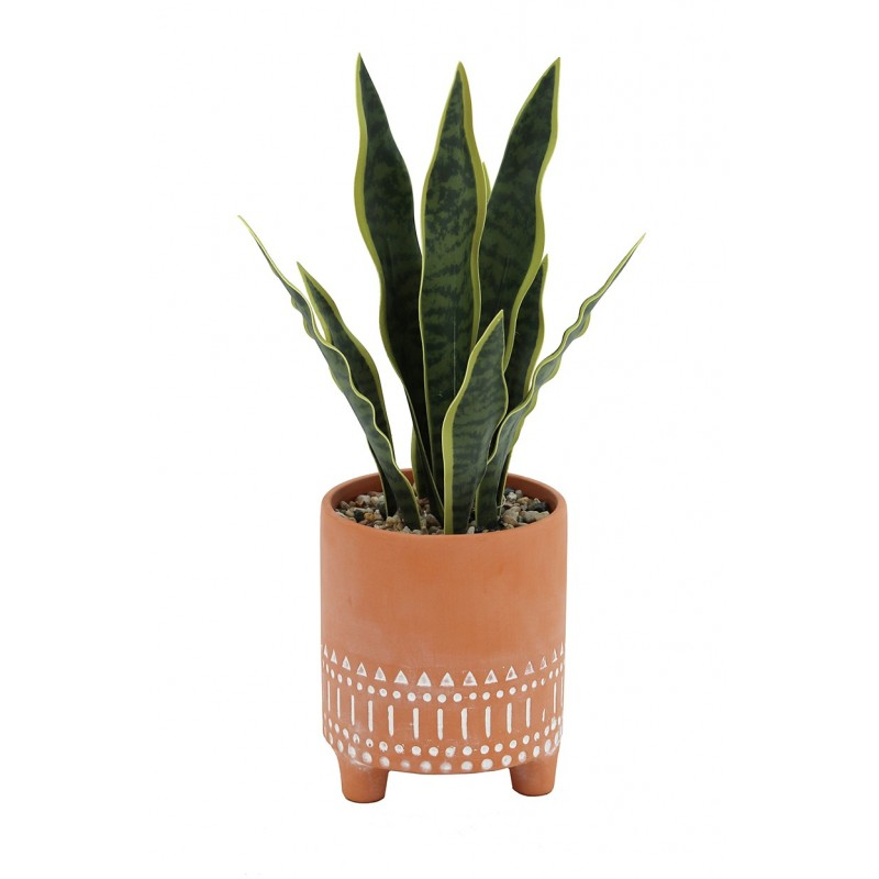 Sanseveria en pot mexicain terracotta 40cm
