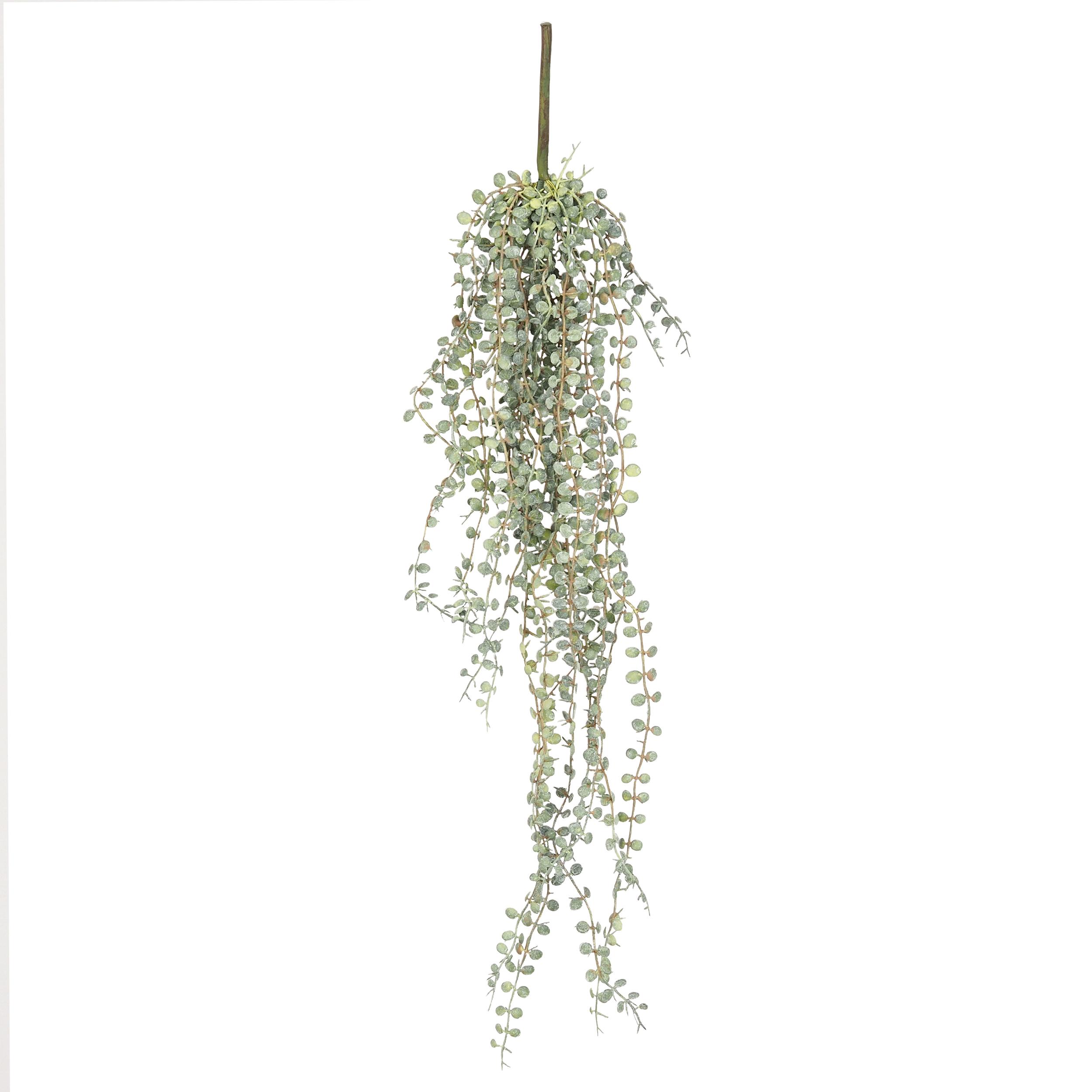 Chute retombante de ceropegia woodii artificiel 70cm