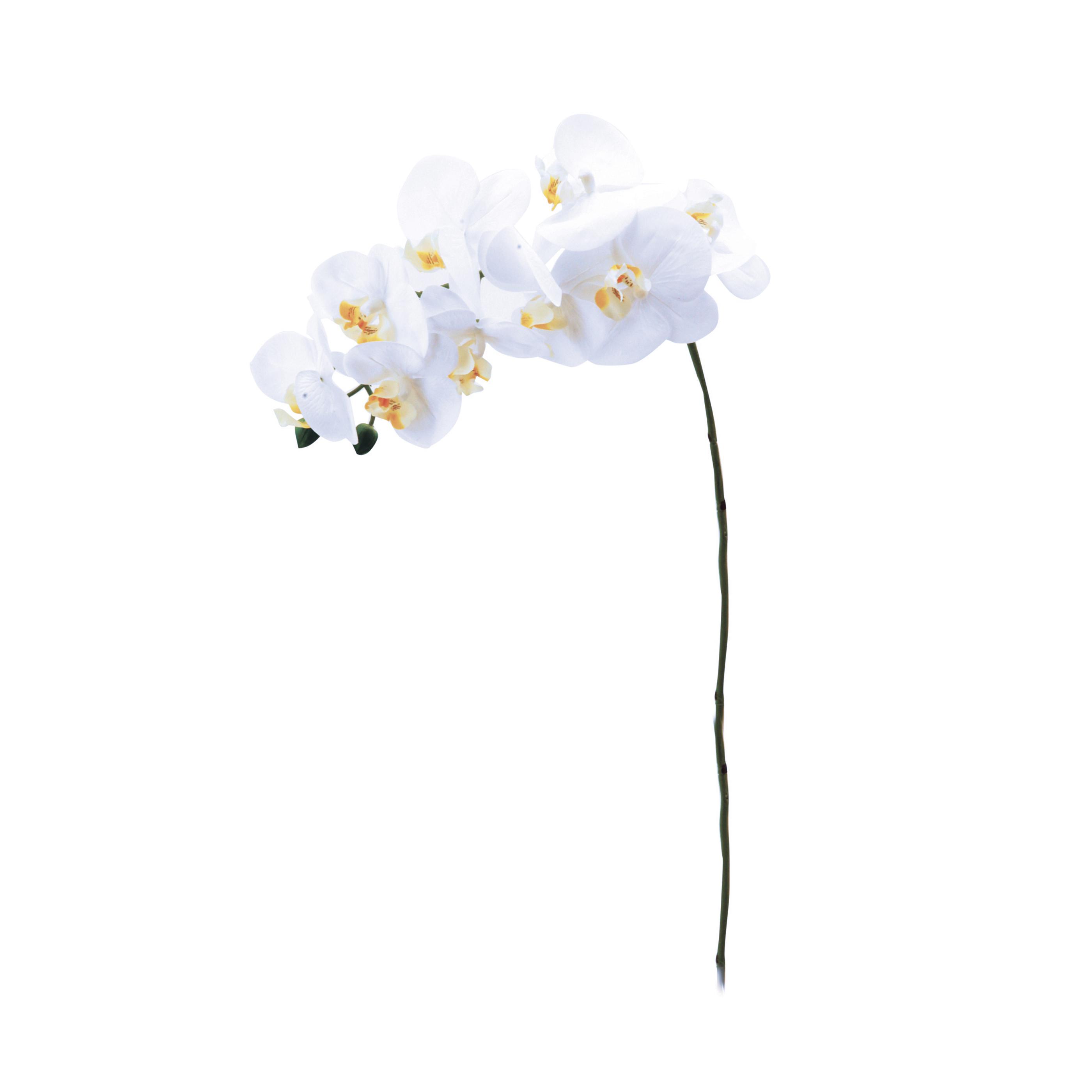 2 tiges d'orchidées blanches artificielles