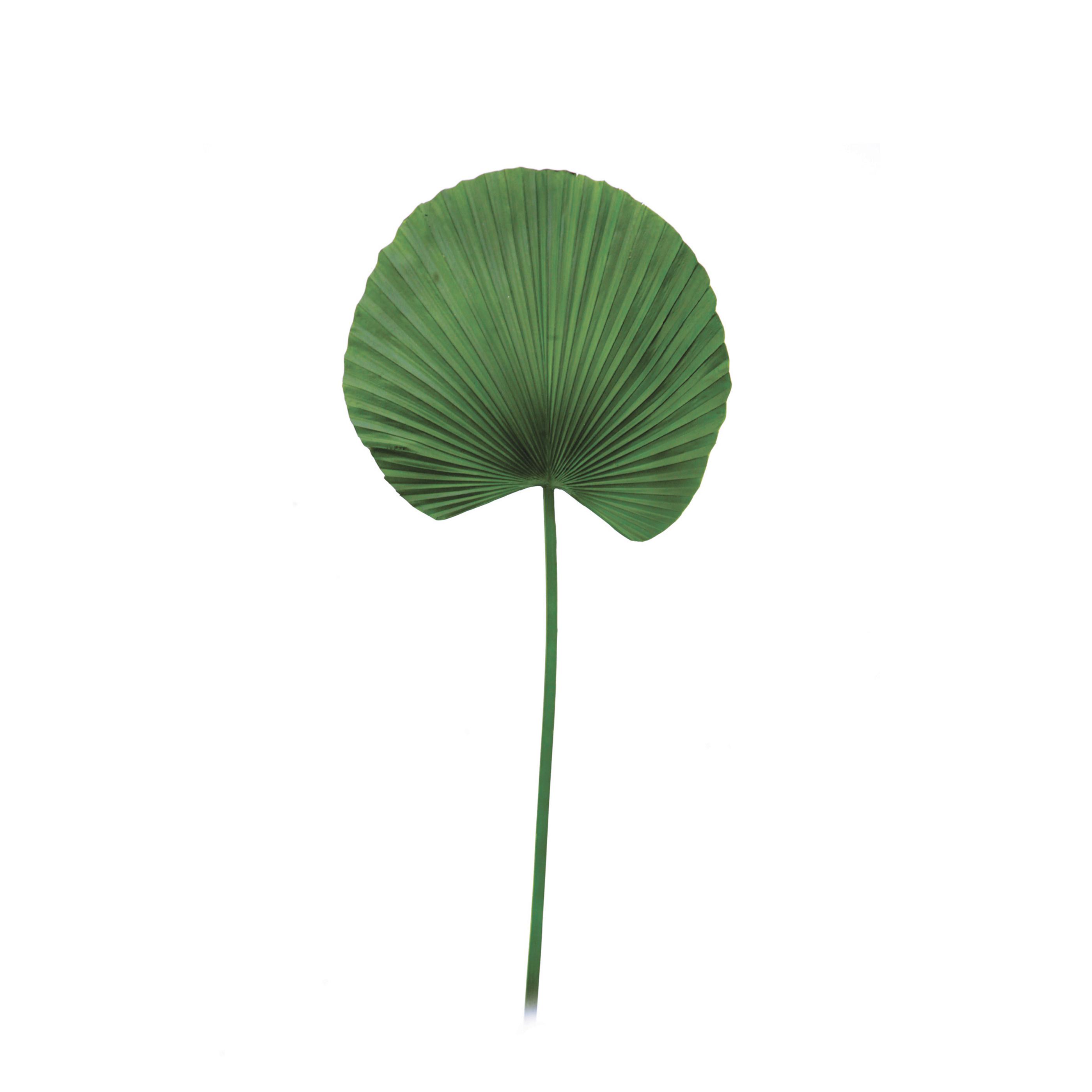 Grande feuille de palme artificielle