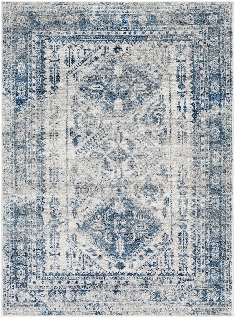 Tapis de salon classique bleu et gris 160x220