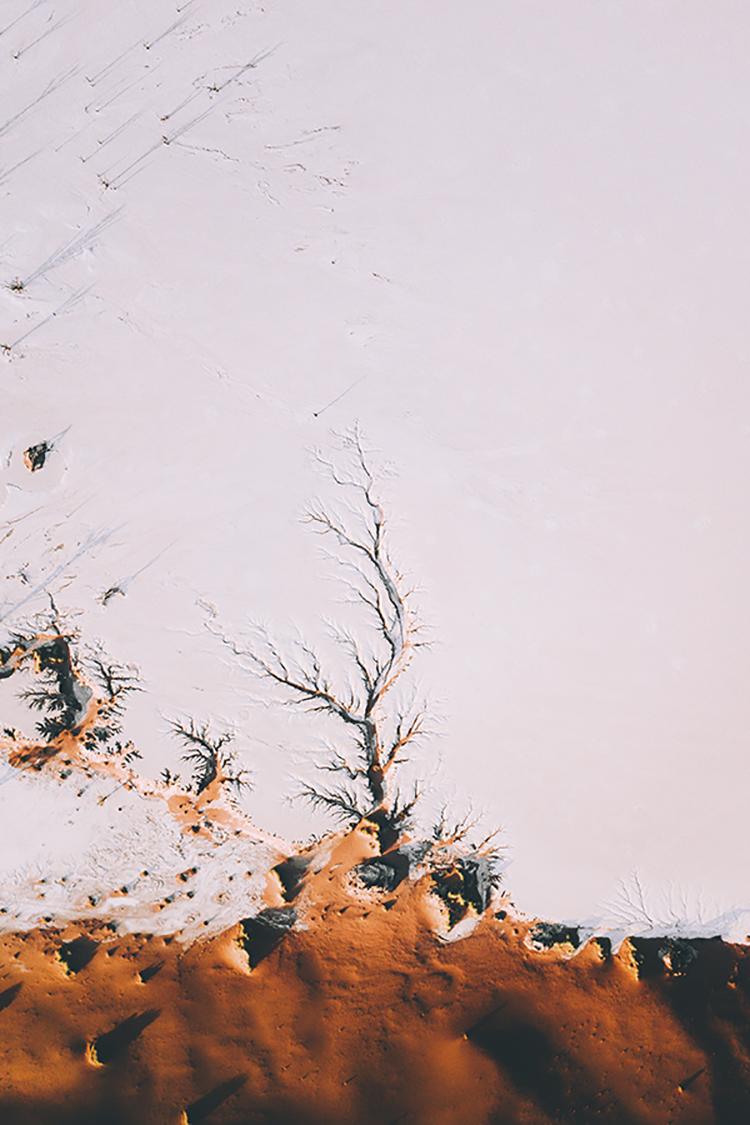 Photographie d'art de Flora Métayer 30x45 cm sur alu