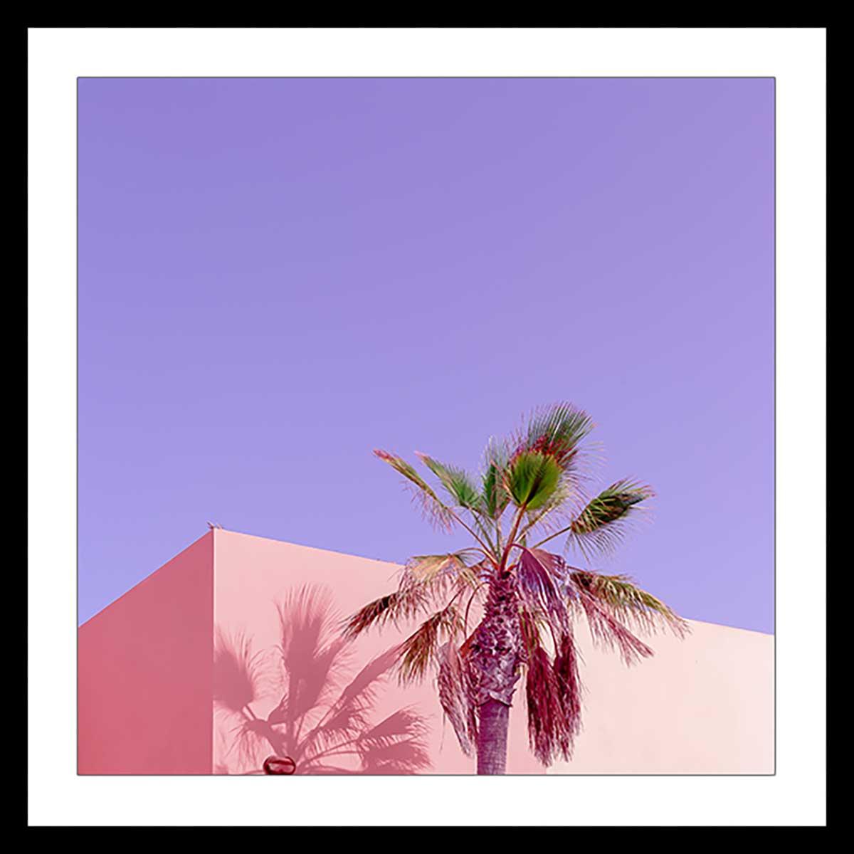 Affiche photo pink palma Affiche sous cadre noir