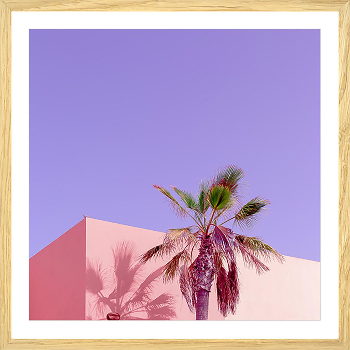 Affiche photo pink palma Affiche sous cadre bois