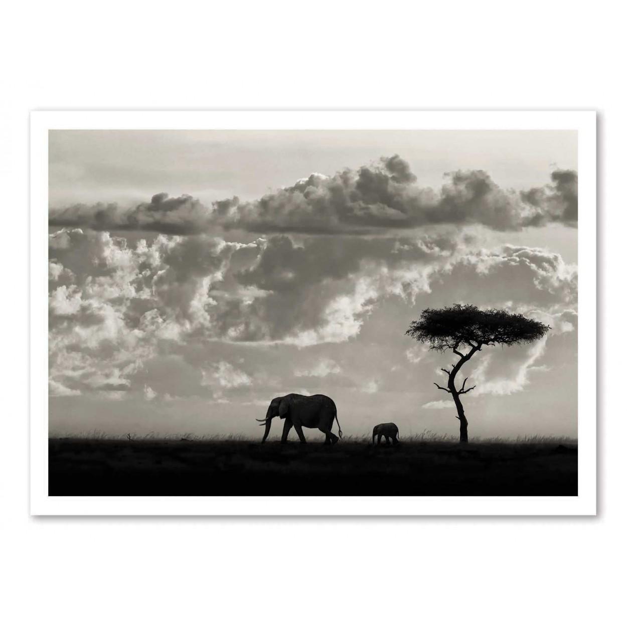 SILHOUETTE OF AN ELEPHANT - Affiche d'art 50 x 70 cm