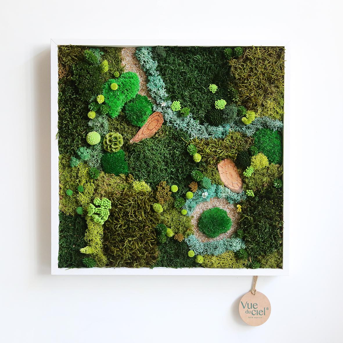 Tableau végétal carré forêt vue du ciel 40x40cm