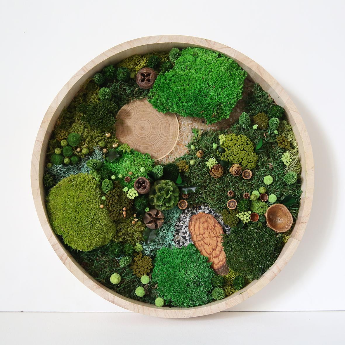 Tableau végétal rond forêt vue du ciel D30cm