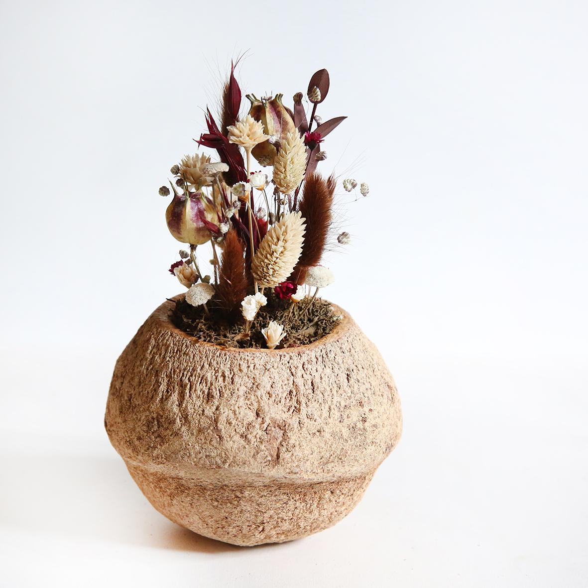 Décoration fleurs séchées noix de sapucaja chocolat